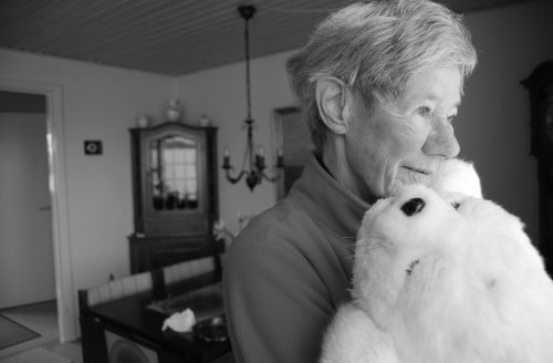 PARO – le robot thérapeutique pour malades Alzheimer